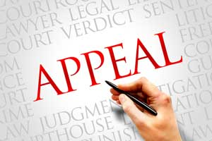 divorce appeals in florida